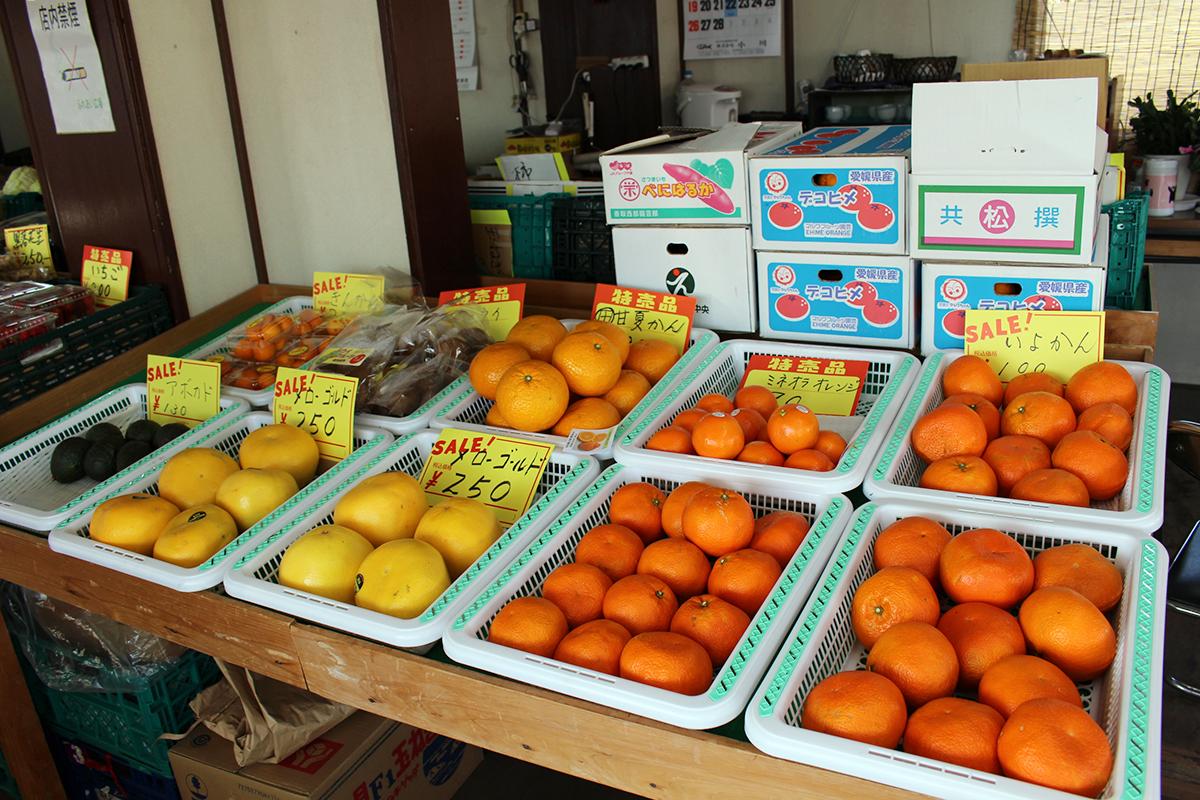 充実の柑橘類